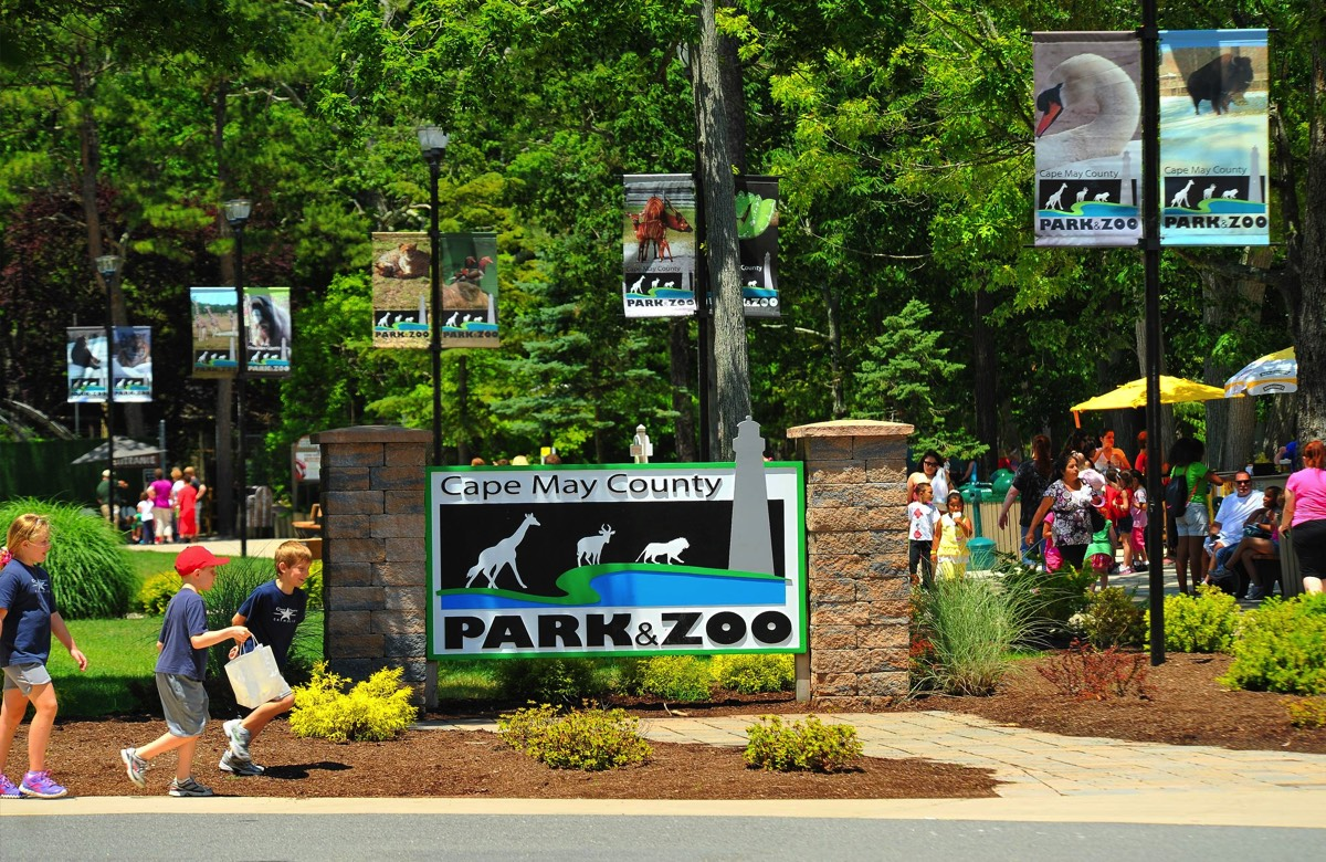 Cape May County Zoo and Zoological Society | NJ Southern Shore